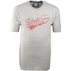 AHORN T-Shirt grau