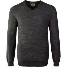 CAMEL ACTIVE V-Pullover grau-meliert
