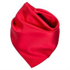 SEIDENFALTER Einstecktuch rot